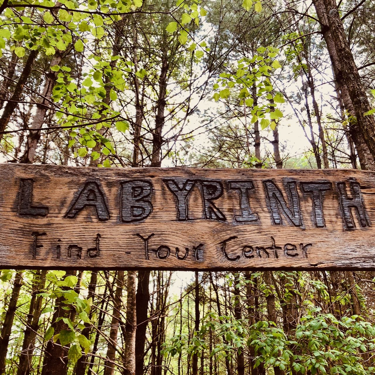 forest labyrinth wood sign