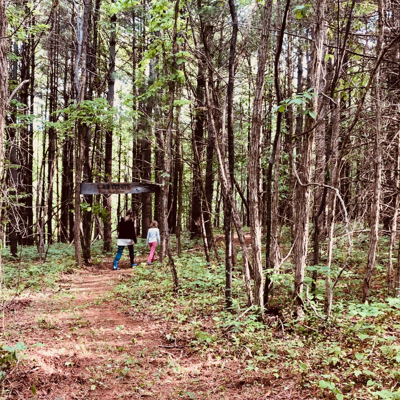 Forest Meditation Labyrinth, Gratitude Garb
